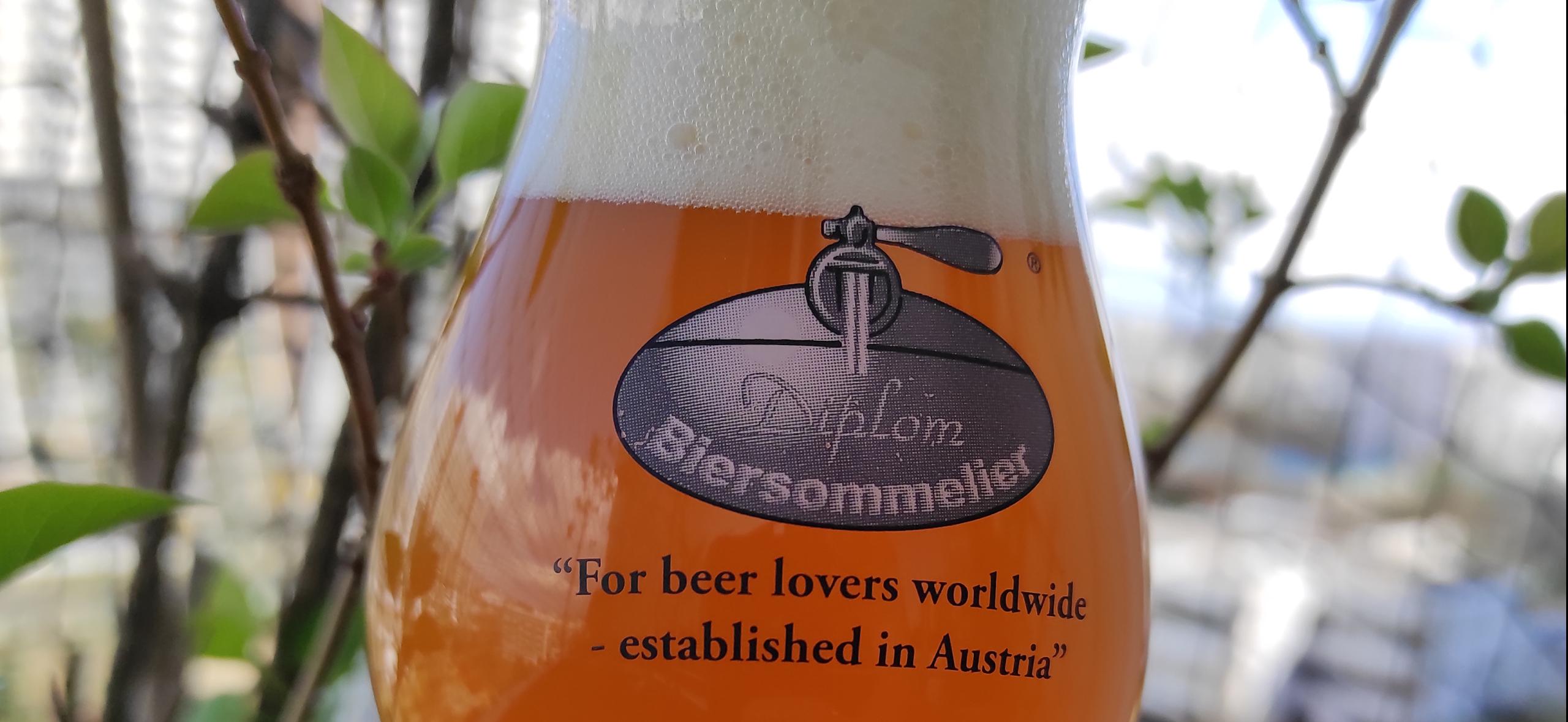 Pale Ale in Diplomsommelierglas